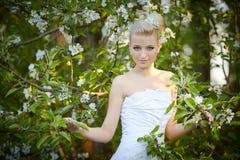 Schöne junge blonde Braut Stockbild