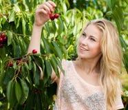 Schöne junge blonde Frau, die Kirschen auf einer heißen Quelle erntet Lizenzfreie Stockfotos