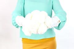 Schöne junge Dame, die den Blumenstrauß der weißen Blumen trägt den gelben Bogen aufwirft auf einem weißen Hintergrund im Studio  Lizenzfreies Stockfoto