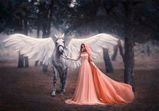 Schöne, junge Elfe, gehend mit einem Einhorn Sie trägt ein unglaubliches Licht, weißes Kleid Kunst hotography stockfotografie