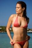 Schöne junge Frau auf einem Strand. Stockfotos