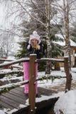 Schöne junge Frau in der Winterlandschaft Lizenzfreies Stockfoto