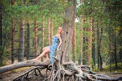 Schöne junge Frau, die auf den Wurzeln von Kiefern aufwirft lizenzfreies stockbild