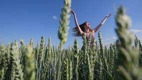 Schöne junge Frau, die auf grünes Weizenfeld auf Hintergrund des blauen Himmels springt stockfoto