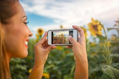 Schöne junge Frau, die ein Foto einer Sonnenblume macht lizenzfreies stockbild