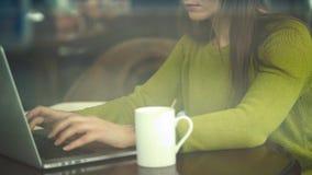 Schöne junge Frau, die in einem Café arbeitet stock video