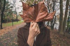 Schöne junge Frau, die ihr Gesicht mit einem großen Blatt versteckt Stockbilder