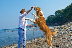 Schöne junge Frau, die mit einem Hund spielt Lizenzfreie Stockfotos