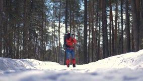Schöne junge Frau, die mit einem Rucksack im schönen Winterwald wandert stock video footage