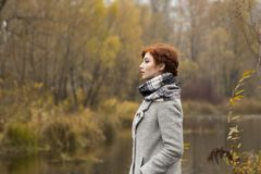 Schöne junge Frau in einem Park im Herbst Stockfotos