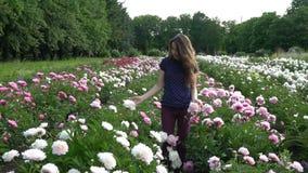 Schöne junge Frau geht auf dem Sommergebiet von Pfingstrosen stock video