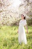 Schöne junge Frau im Apfelblütengarten Stockfoto