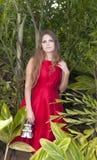 Schöne junge Frau im Park stockbilder