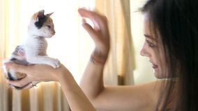Schöne junge Frau im Wohnzimmer, das mit ihrem wenig Rot mit schwarzem Kätzchen spielt stock footage
