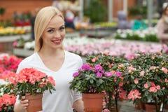 Schöne junge Frau kauft adrette Anlage Lizenzfreie Stockbilder