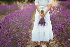 Schöne junge Frau, Lavendel auf einem Gebiet halten Stockfotografie