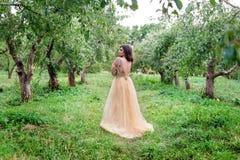 Schöne junge Frau umarmt sich und steht zwischen den Bäumen Stockbilder