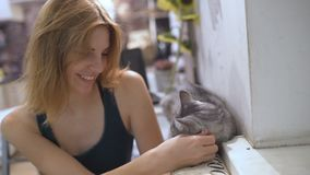 Schöne junge Frau und Kätzchen zu Hause Haustierkatze und junger Inhaber, die sich zusammen entspannen stock footage