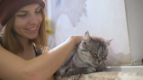 Schöne junge Frau und Kätzchen zu Hause Haustierkatze und junger Inhaber, die sich zusammen entspannen stock video footage