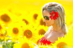Schöne junge Frau zwischen Sonnenblumen Lizenzfreie Stockfotos