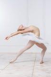 Schöne junge Frauen-Ballerina Lizenzfreie Stockfotos