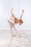 Schöne junge Frauen-Ballerina Lizenzfreie Stockfotografie