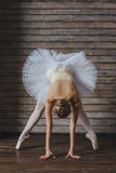 Schöne junge Frauen-Ballerina Lizenzfreies Stockbild
