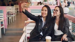Schöne junge Frauen nehmen selfie im Café, das bei Tisch sitzt und intelligentes Telefon verwendet Attraktives kaukasisches Mädch stock video footage