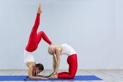 Schöne junge Frauen tun übendes Yoga Yoga Gruppe von Personen in der Turnhalle stockbild