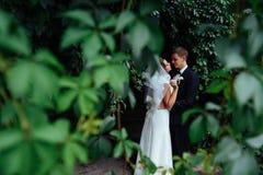 Schöne junge küssende Hochzeitspaare, blonde Braut mit flowe Stockbild