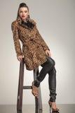 Schöne junge Modefrau, die auf einem Schemel sitzt Stockfoto