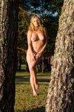 Schöne junge nackte Frau Stockbilder