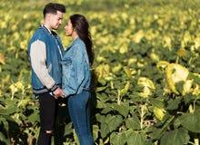 Schöne junge Paare in der Liebe, die auf einem Gebiet von Sonnenblumen steht Lizenzfreie Stockfotografie