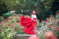 Schöne junge schwangere Frau, die auf dem Gebiet des Rosenesprits geht lizenzfreie stockfotografie