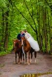 Schöne Jungvermählten, die zwei Pferde reiten lizenzfreies stockbild