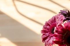 Schöne künstliche Blumen auf hölzernem Hintergrund stockbilder