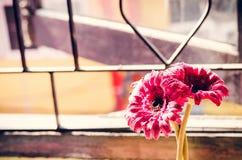 Schöne künstliche Blumen auf hölzernem Hintergrund: Weinleseton stockbild