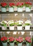 Schöne künstliche Rosen-Blumen in den Metalltöpfen stockfotografie