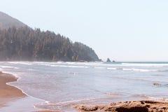 Schöne Küste des Meeres mit einem Wald auf einem Hügel im Hintergrund lizenzfreie stockfotos
