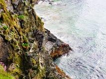 Schöne Küste von Irland lizenzfreie stockfotos