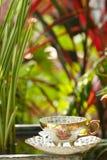 Schöne Kaffeetasse im Garten stockfotografie