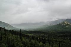 Schöne kalte Nordnatur: Bäume und Felsen unter schwerem bewölktem Himmel stockfoto