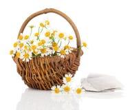 Schöne Kamille blüht im Korb mit T-Stück Tasche Stockbild