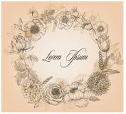 Schöne Karte mit einem runden Blumenkranz des Weinlesegartens Stockbilder