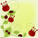 Schöne Karte mit Marienkäfern und roten Blumen Stockfoto