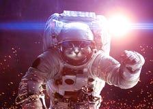Schöne Katze im Weltraum Elemente von diesem vektor abbildung
