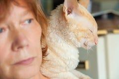 Schöne Katze mit dem gelockten Haar stockfotos
