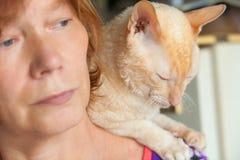 Schöne Katze mit dem gelockten Haar lizenzfreie stockfotos