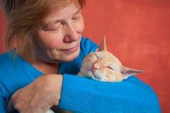 Schöne Katze mit dem gelockten Haar lizenzfreies stockbild