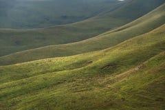 Schöne kaukasische grüne Landschaft der Hochländer mit einem Tanz des Lichtes und der Schatten auf einem Abhang Stockfotos